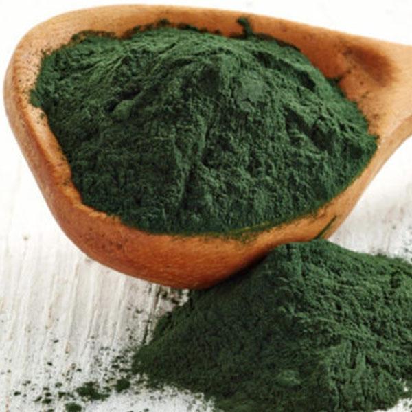 Bột tảo xoắn nguyên chất
