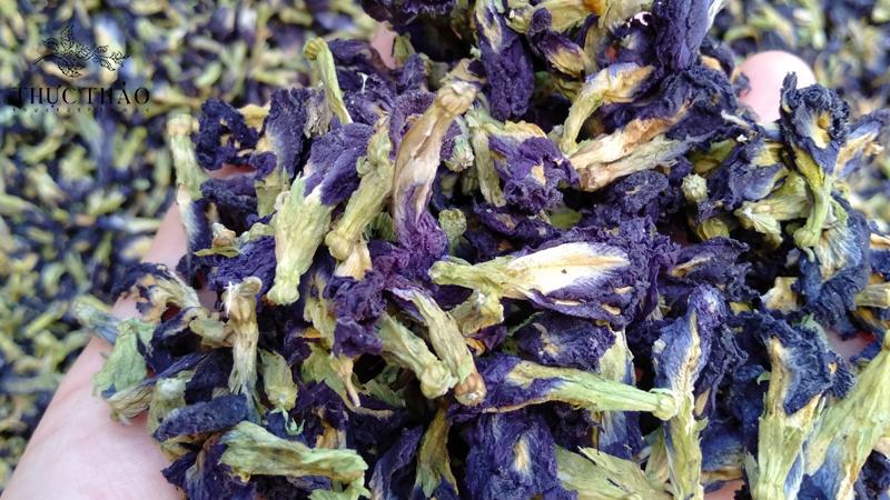 Trà hoa đậu biếc có nhiều tác dụng tốt cho sức khỏe