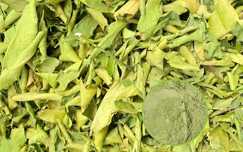 Lá chanh sấy lạnh được sản xuất tại Thực Thảo 100% nguyên chất