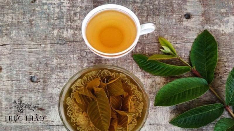 1 tách trà lá ổi giúp ngăn ngừa tiểu đường, giảm cân cực tốt