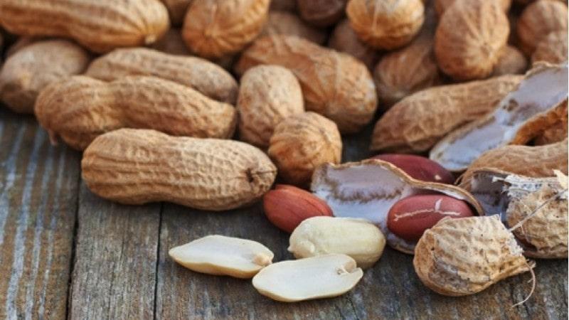 Lạc (đậu phộng) chứa nhiều dinh dưỡng và sử dụng nhiều trong cuộc sống