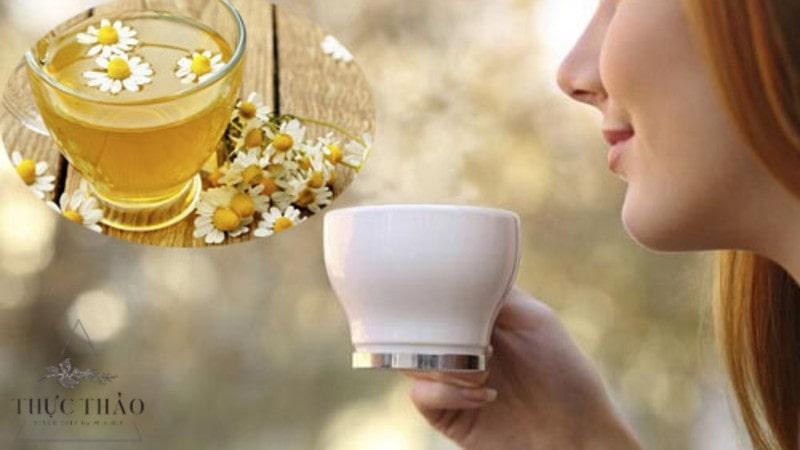 Tác dụng của trà nụ hoa cúc giúp mát gan, lợi tiểu, thanh nhiệt