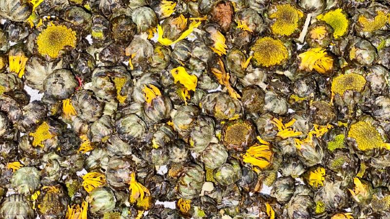 Nụ hoa cúc phơi khô tự nhiên dùng làm trà tại Thực Thảo