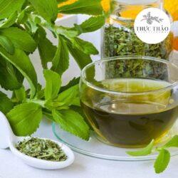 Trà cỏ ngọt giúp thanh nhiệt, hỗ trợ bệnh nhân tiểu đường, cao huyết áp