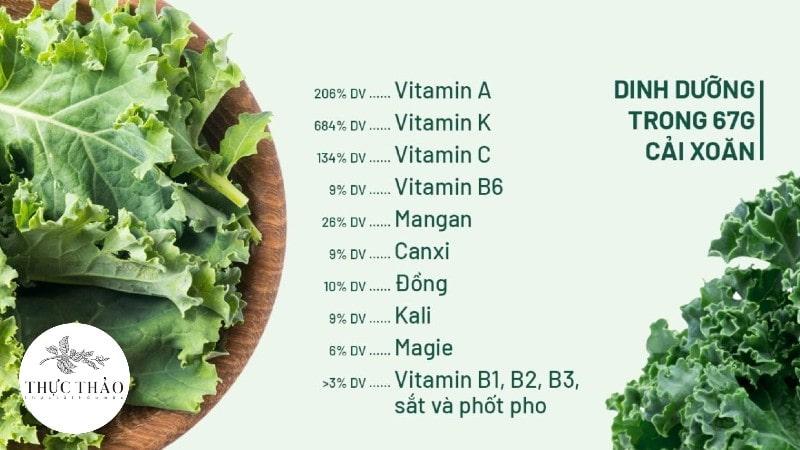 """Cải xoăn mang nhiều giá trị dinh dưỡng được mệnh danh là """"nữ hoàng rau xanh"""""""