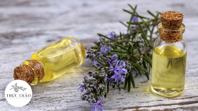 Ngoài bột hương thảo thì tinh dầu hương thảo cũng được dùng rộng rãi
