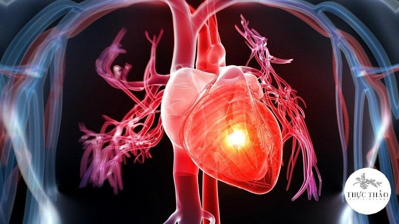 Tăng cường sức khỏe tim mạch từ yến mạch